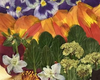 Flower 08.18 Original Framed