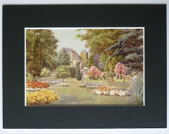 Antique print of English country garden with pillar roses and a Cedar tree, lawn art available framed watercolour print to fit 6 x 8 frame