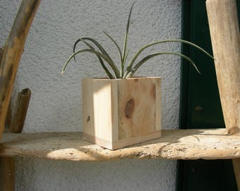 pot and wood pallet for pen or plant