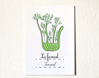 kitchen art print 'fenel' Vegetable Illustration food 5x7 (Fruits and Vegetables Food series)