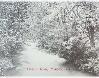 Glade Run Creek - Muncy Hughesville Pa - Real Photo Postcard - Wooded Forest By Stream - Near Williamsport Pennsylvania PA - FREE SHIPPING