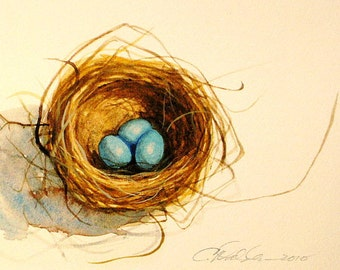 Watercolor nest of Robins eggs three egg nest watercolor prints of robins nest