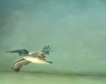 Pelican Beach Art Print - Soft Surreal Abstract Green Blue Gray Ocean Beach House Wall Art Photography