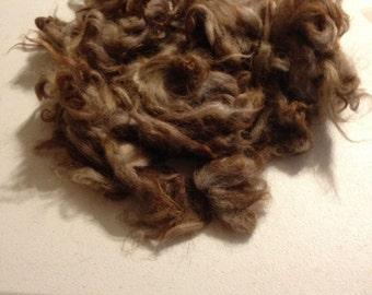 Washed Karakul Wool for Spinning, Felting or Crafting