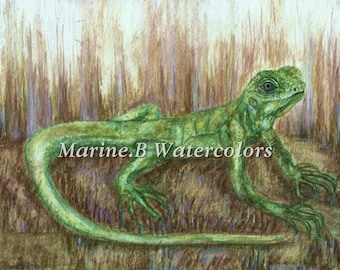 Watercolor Gecko/ Lizard Art Print 8 x 10 in