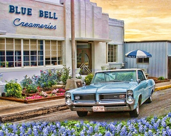 64 Grand Prix, Bluebonnets and Blue Bell