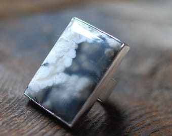 Stormcloud Ring Plume Agate and Onyx