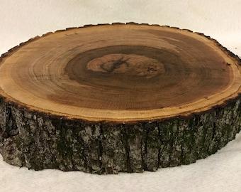 "Large Oak 16-17"" diameter, 3-4"" thick wood slice. Centerpiece (stock photo)"