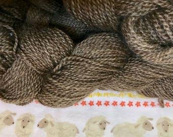 Natural Color Romney Yarn - Myrtle