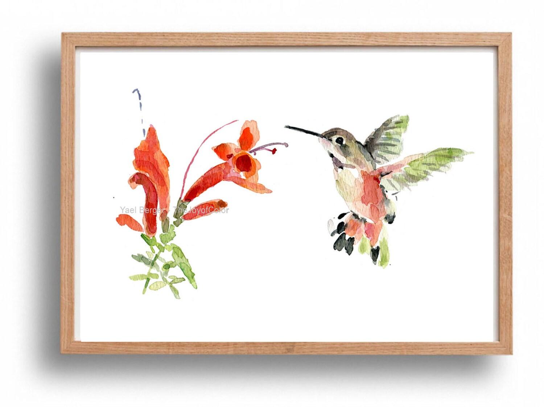 Hummingbird art print hummingbird watercolor print bird art