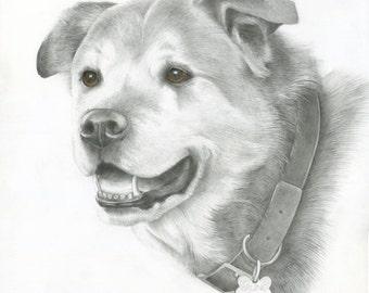 Custom Pet Portrait, Custom Dog Drawing, Original, Hand Painted Art from your photos