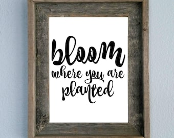 Bloom Where You Are Planted, Quote, Printable, Home decor, Wall art