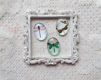 Scrapbooking Embellishment, Dragonfly Glass Cabochon, Card Making, Mini Album, Mixed Media, Home Decor