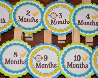 Monkey Photo Clips. Banana. Photo Clips. Picture Banner. Set of 13. Newborn. 12 months. First Birthday.Green. Teal