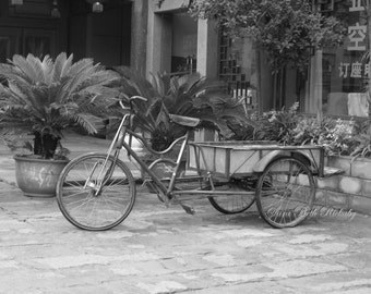 Photo of Bike in LongChang, Black-and-White