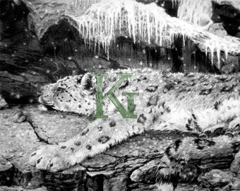 "KG Cards ""Snow Leopard Napping"" Greeting Card"