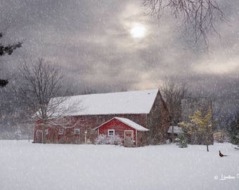 Red Barn in Winter # 450