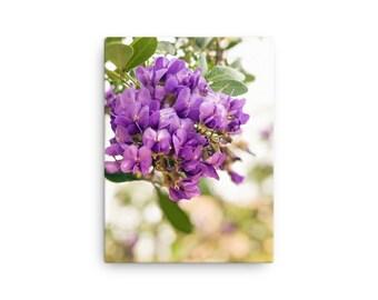 Violet Flowers | Canvas