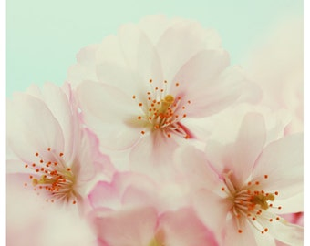 Flower Photograph - Nature Photography - Pink Print - Jardin - Spring Art - Cherry Blossom Art - Fine Art Photography - Flower Print - Art