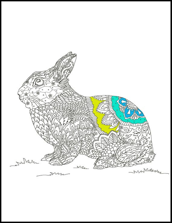 grown up coloring page animal coloring pages rabbit coloring page adult coloring pages rainy day activity gift coloring page from abeautifulstate