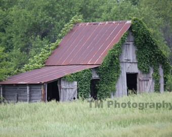 Old Barn - Rural Decay - Rural - Farmland - Deserted Barn - Vacant - Summer Field - Fine Art Photography