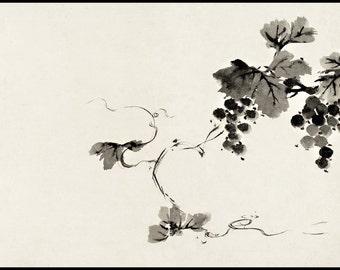 Ink Drawing Print - Japanese Minimalist - Grape Digital Print - Botanical Vintage Print - Japanese Art - Ink Brush - Sumi-e - Oriental Art
