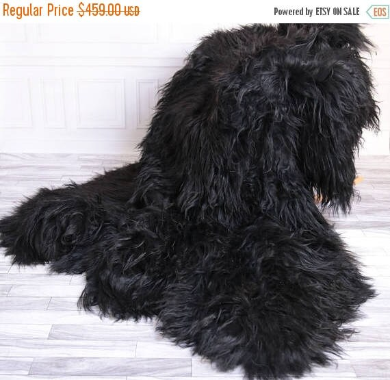 Sheepskin Rug Square: ON SALE Icelandic Sheepskin Throw Black Throw Black
