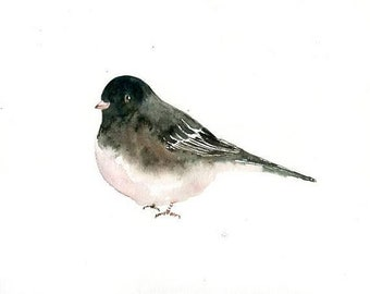 Black eyed junco, bird painting, bird artwork bird print, bird watercolor, original watercolor painting 10X8inch