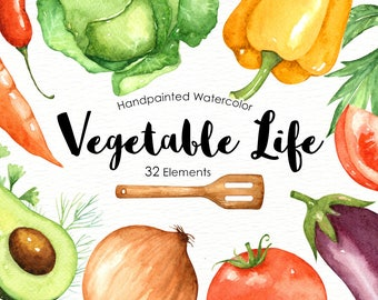 Vegetables Life Watercolor Cliparts, Veggies watercolor, Vegetable clip art, Organic, Culinary clipart, commercial use, digital Download