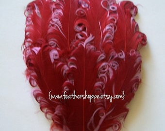 1 Sangria Curled Goose Feather Pad