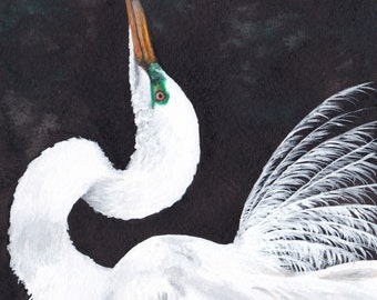 Limited Edition Print of Original Egret Watercolor Painting