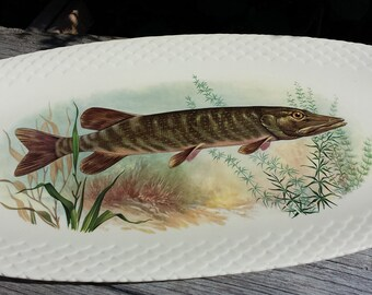 Great fish dish. Motif Pike. G. Brachet Terrasson.Limoges. French vintage