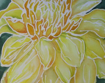 Close Up Yellow Dahlia Fine Art Print, available in 7x7 inches