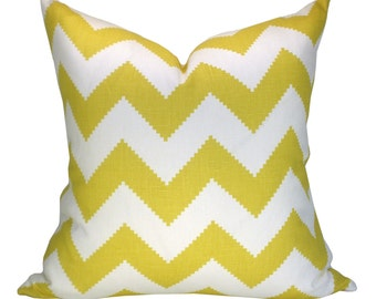 Limitless pillow cover in Squash