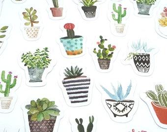 Set of 45 stickers stickers theme cactus succulent potted plants DIY decorative scrapbooking paper