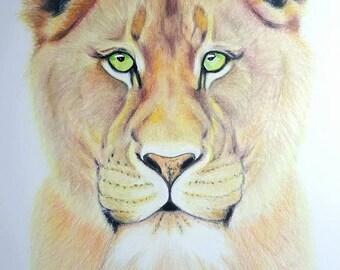 Lioness FINE ART PRINT 'Fierce Nurturer' ~ A3 * Limited Edition * by Tanya Cole