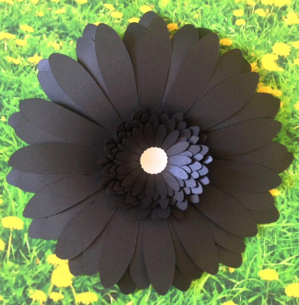 Retirement gift idea black gerbera daisy wall flower 8 zoom izmirmasajfo Image collections