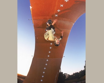 Bob Burnquist Skateboarding Photograph - Loop Skateboard Photo Print 18 x 24 Inch Paper