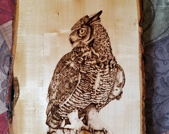 Great Horned Owl Pyrography