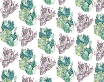 Postcard Cacti, Illustrated Postcard, Aquarel and Pencil