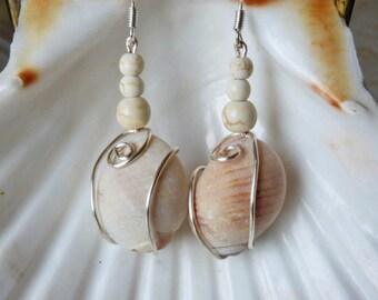 Wire wrapped sea shell earrings, real seashell earrings, natural shell earrings