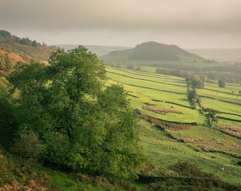 Early Autumn Morning in Fryup Dale | Fine Art Print | Landscape Photography