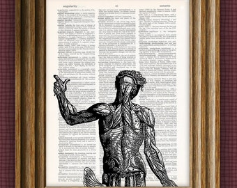 Cool human torso medical illustrationbeautifully upcycled vintage dictionary page book art print 8.5 x 11