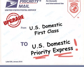 Express Mail Upgrade - Small Flat Rate Box or Envelope
