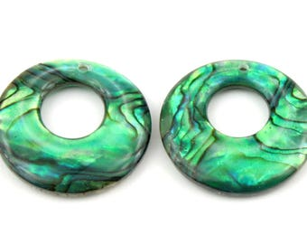 ES-0411 - Set of 2 pieces - Abalon (paua shell) Mother of pearl - for Earrings or Pendant