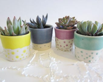 Set of 4 Ceramic Planters, dorm decor, Succulent Planter, office decor, Mini Planter,  Home Decor, housewarming gift