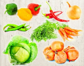 Vector Vegetable Clipart - Watercolor - Carrot, Lettuce, Pepper, Onion, Cabbage - Veggies Clipart Graphics