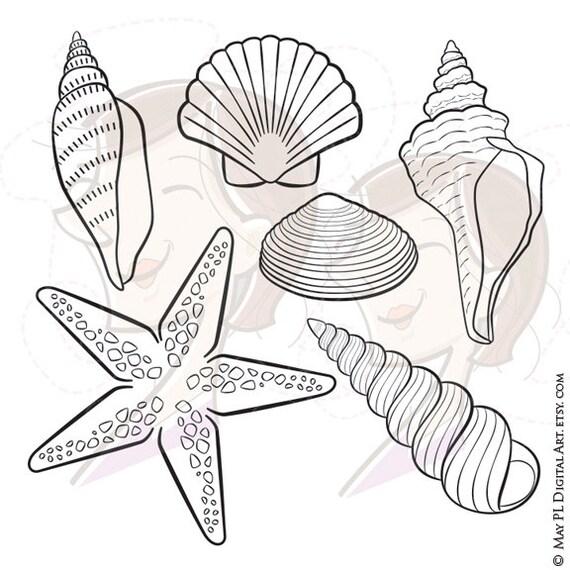 Digital Seashell Stamps Decor Starfish Summer Beach Vector