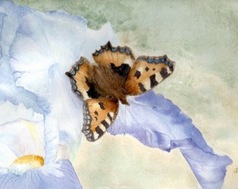 Butterfly IRIS purple and Brown, original watercolor painting wall decor