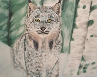 Impression Portrait Lynx